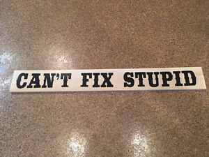Gag gift, can't fix stupid sign