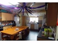 Double room available in sociable, friendly 13 bed house just off Gloucester Road - mid-July