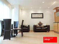STUNNING DUPLEX 1 BEDROOM APARTMENT IN CANARY WHARF AVAILABLE NOW E14