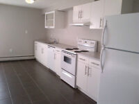 2Bed RENOVATED Condo SouthSide