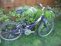 Raleigh Shugo 24 girls bike. No swap, selling only!