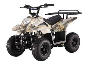 Childs Toy ATV 110cc with Speed Limiter