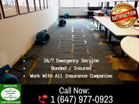 Water Damage And Mold Remediation – Service You Can Count On!