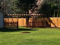 Pre stain cedar fence panel installation