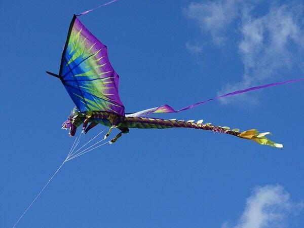 Einleiner: 3D-Drachen Drache grün