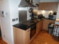 City Centre Modern Flat for Rent (lounge separate from bed area)