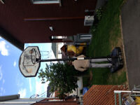 Panier de basketball, hauteur ajustable, filet en acier