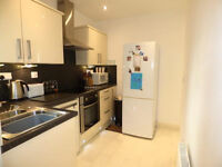 Beautiful 1 Bedroom Flat in Goodmayes part dss accepted with guarantor