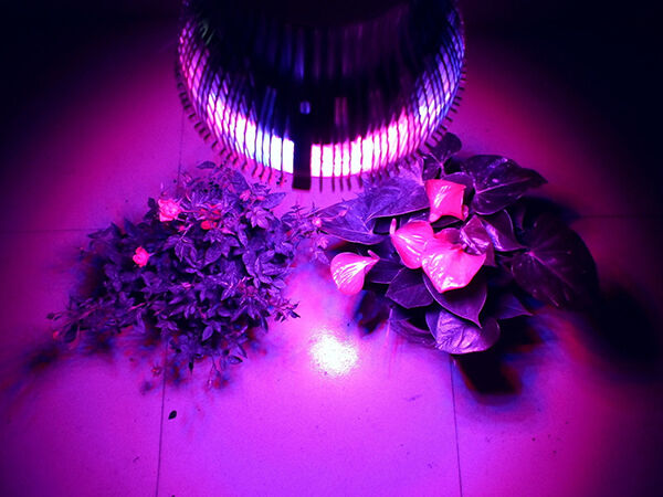 diy led grow lights ebay. Black Bedroom Furniture Sets. Home Design Ideas