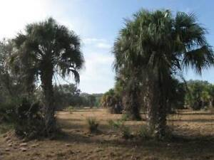 Private and Secluded 4+ Acre Homesite in sunny Southwest Florida