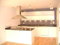 Very Spacious modern one double bedroom flat in Wimbledon Village, 6 mins walk to Wimbledon stn
