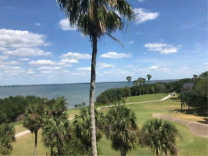 Beautiful Clearwater 2bd condo on water