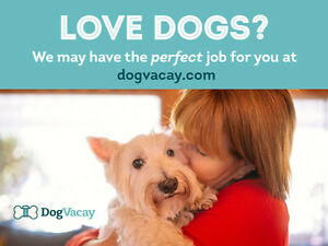Dog Sitter Needed - Make $1,000+ Per Month Strathcona County Edmonton Area image 1