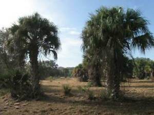 Secluded 4+ Acre Homesite in warm, sunny Southwest Florida !