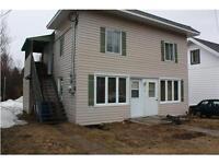 Duplex au village de St-Donat près parc / plage et abordable !