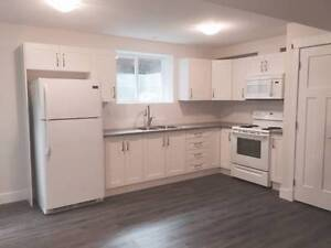 Brand new one bedroom suite - Cloverdale, BC