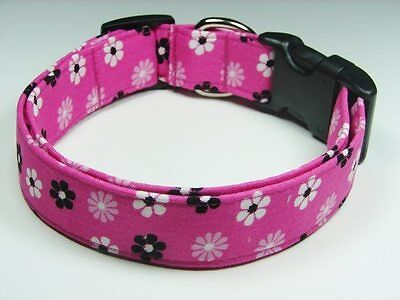 Charming Pink with Black Pink & White Daisies Flower Dog Pet