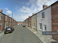 2 bedroom house in Ninth Street, Horden, SR8 (2 bed)