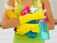 CLEANING DELUX Karolina Stachowiak IRONING DELUX