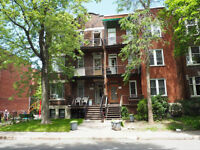 3 rooms available now in cozy communal apartment near Mile End