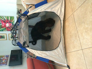 POP -UP PET TENT INSTANT DAWG HAUS