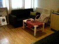 Short or long term twin room in Roehampton near Putney Zone 2