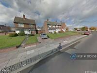 3 bedroom house in Wolviston Walk, Stockton On Tees, TS19 (3 bed)