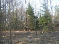 230 Acres Haliburton Estate -  POWER of SALE - Ref. #: 518