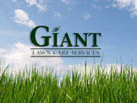 Lawn Mowing/Cleanups - Rental Property Maintenance Solutions