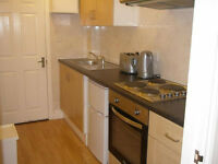 007G-ONLY FOR 3 MONTHS-MODERN DOUBLE STUDIO FLAT WITH GARDEN,SEPARATE KITCHEN AND BATHROOM-£300 WEEK