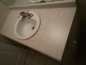1 Bathroom countertop and 2 matching sinks