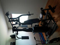 York All in One Home Gym-legs, chest, arms, back, abs