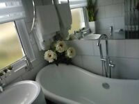 PROFESSIONAL DEEP,ONE OFF,DOMESTIC,END OF TENANCY CLEANING IN*ALL LONDON*