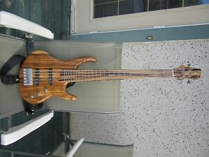 5 string electric bass guitar