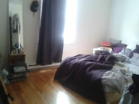 Room for Rent Outremont for june (1 month )