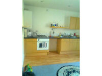 Spacious Double room in a two bedroom flat, Furnished, Free parking, convenient location