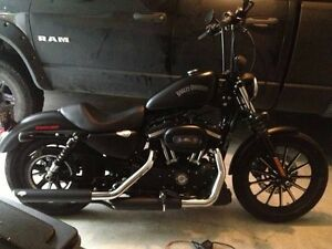 2015 iron 883 custom, low kms