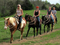 HORSEBACK RIDING (1HOUR)