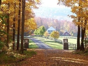 Country home wanted