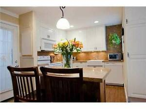 2 master bedrooms+den in beautiful, private duplex Marpole home
