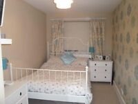 ***MODERN AND COZY DOUBLE ROOM AVAILABLE NOW!