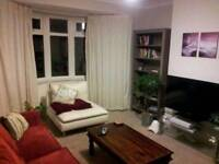 Spacious double room in Heaton friendly professional flat