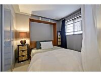 Best DOWNTOWN Location! RENOVATED Bachelor CONDO