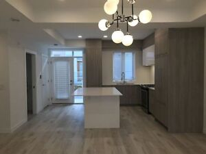 University District New Townhome for Rent