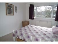 Large Double Room To Let In Eltham, High Street. (All The Bills Included) *Available Immediately*