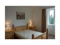 Newly decorated one bedroom flat in Eastham dss accepted
