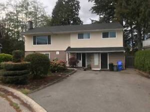 North Delta Upper Level House for Rent