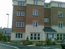 Amazing One bed apartment available 2nd October 2016 for short term rental. Wifi Parking NO CONTRACT