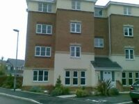 Amazing One bed apartment available 21st August for short term rental. Wifi Parking NO CONTRACT