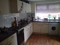 2 Large rooms to let in Chorlton